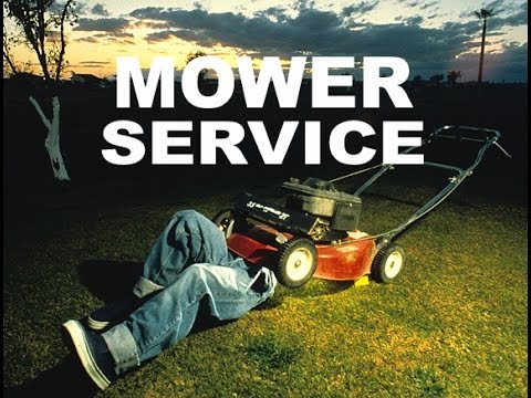 Winter Service Offer Ashley Mowers